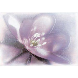 декор Alma Ceramica DWU07LIL023