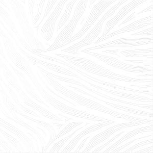 напольная плитка Alma Ceramica TFU03RMA000